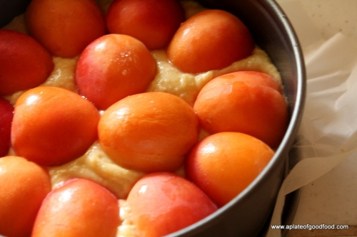 recipes with apricots