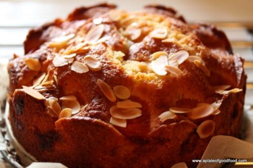 fresh apricot cake