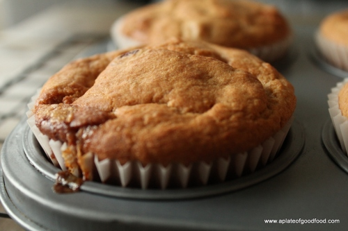 wholewheat flour muffins